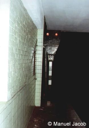 Bild: Signal 123