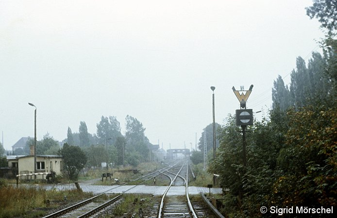 Bild: Gsp/Ra-Signal